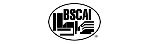 7-BSCAI_OPTIMIZED